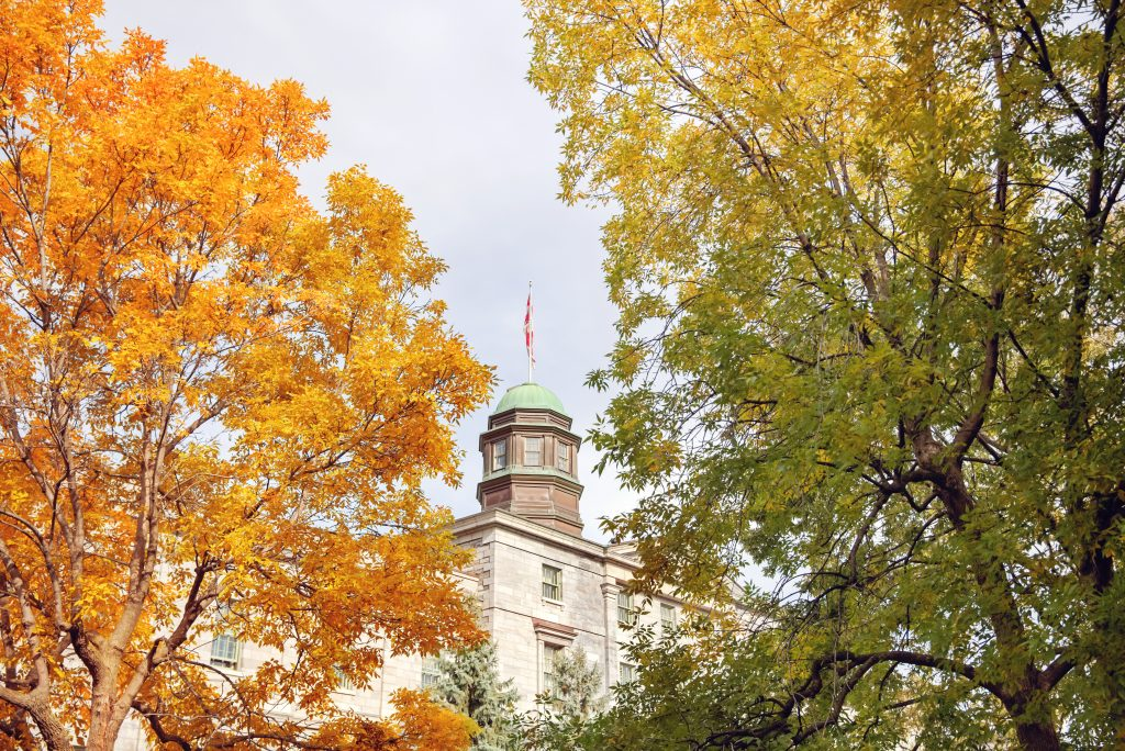 Image showing main building for McGill University with the university flag.